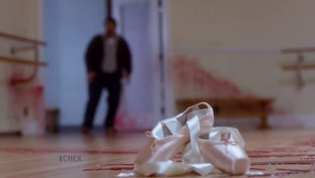 les chaussons de danse