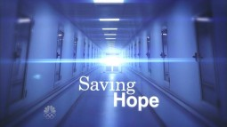 Saving.Hope.S01E01.avi_000262345
