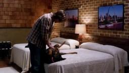 Sam et le chien